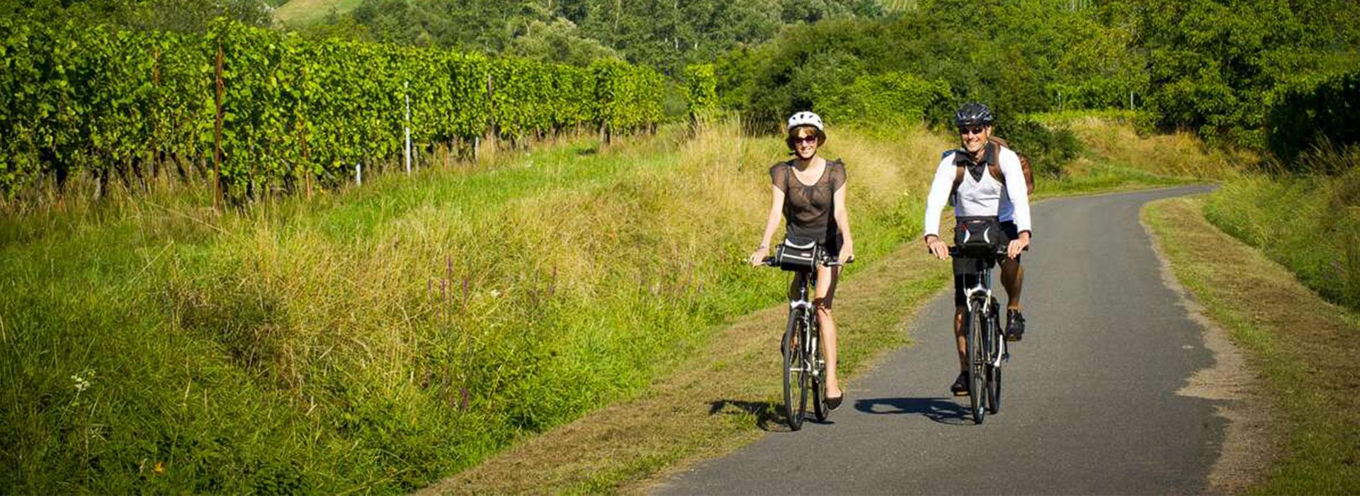 Alsace Vélo, Voyage, Agence de Voyages, Agence Réceptive, Lisela, Grand Est