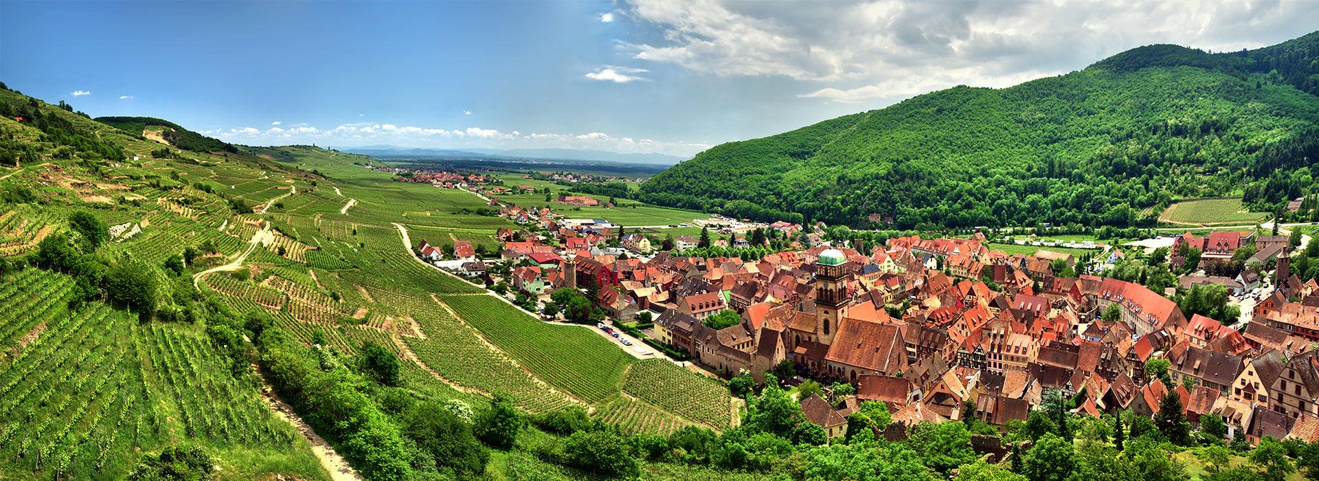 Route des Vins, Alsace, Voyages, agence de voyages, agence réceptive, Lisela, Grand Est