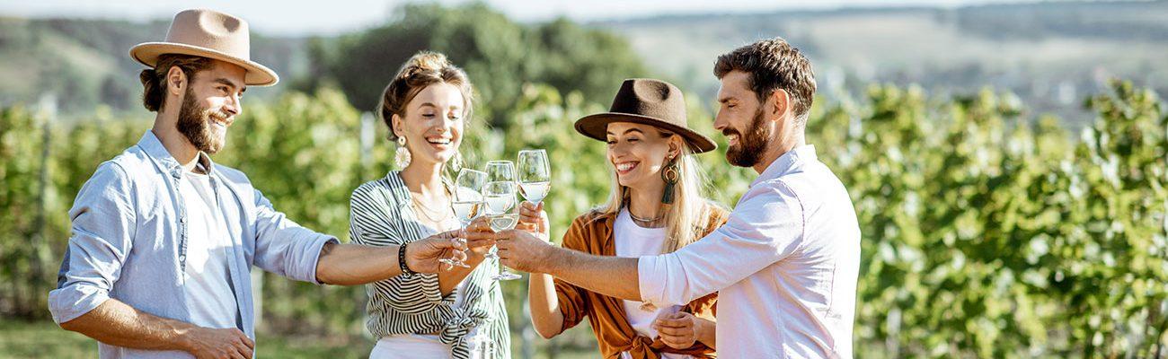 Vignes et Vin en Liberté
