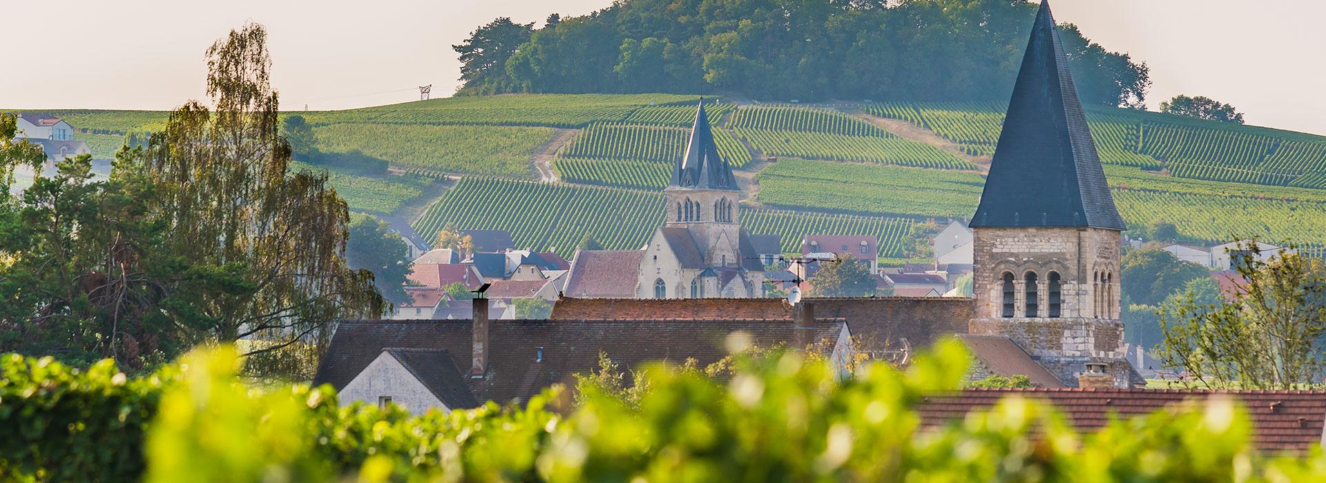 Week-end en famille sur la route des vins