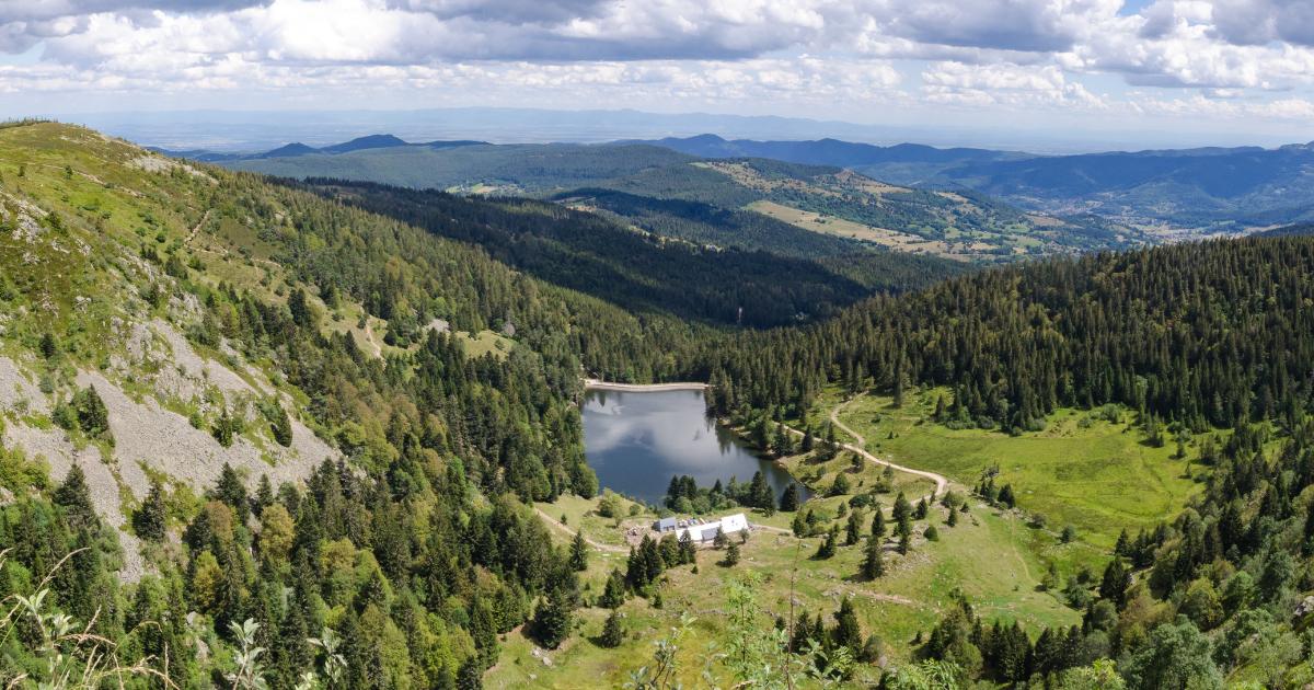 Que faire dans le massif des Vosges cet été ?